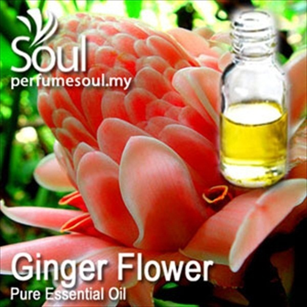 ginger-flower